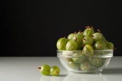 Soczyste dojrzałe jagody agrest w małym szklanym talerzu na czerni ukazują się Agrestowy żniwo Fotografia Stock