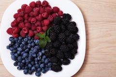 Soczyste dojrzałe naturalne organicznie malinek czarnych jagod czernicy Obraz Stock