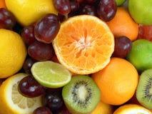 soczyste owoców zdjęcia royalty free