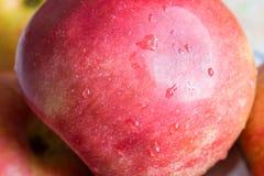 soczysty apetyczny jabłko Fotografia Stock