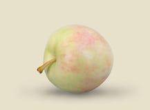 Soczysty jabłko na tle Zdjęcia Royalty Free