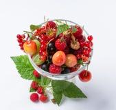 Soczysty jagodowy żniwo Fotografia Royalty Free