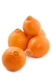 soczysty mandarynka obrazy stock