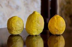 Soczysty naturalny organicznie cytryny lata żniwo na gładkim stole Obrazy Stock
