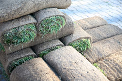Sod. Rolls of sod to make a perfect lawn or golf course Stock Images