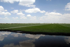 Sod Farming. Green Grass Sod Farmland under Reflection of Puffy White Summer Clouds and Blue Sky royalty free stock photography