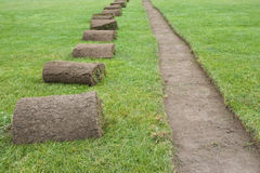 Sod rolls on grass field. Several rolls of sod beside a clean cut row in preparation for underground sprinkler installation royalty free stock photos