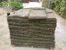 Sod Stacked for Lawn. Sod stacked on a palate.  Ready to be made into a lawn stock photography