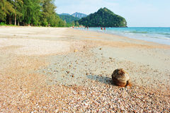 Soda Andaman, Phra Nang beach Royalty Free Stock Image