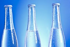 Soda bottles with caps Stock Photography