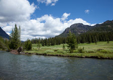 Soda Butte Creek Royalty Free Stock Image