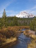 Soda Creek and South Sister Stock Photo
