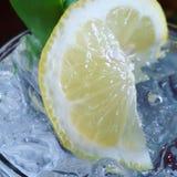 Soda de Lamon Imagen de archivo