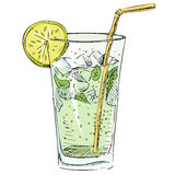 Soda glass with citrus segment and ice cubes. Hand drawing colorful sketch vector illustration Stock Image