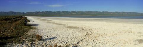 Soda Lake. Dry Lakebed, Soda Lake in  California Royalty Free Stock Image