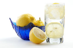 Soda and Lemon. Refreshing glass of club soda with lemon slices Royalty Free Stock Images