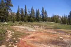 Soda Springs, Yosemite NP Royalty Free Stock Images