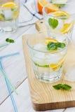 Sodavatten med limefrukter, apelsiner, citroner, is och mintkaramellen Arkivbilder