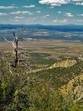 Sodavattenkanjon i Mesa Verde National Park Arkivbild