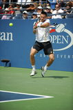 Soderling Robin at US Open (12) Stock Photo