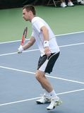 Soderling: Tennis Player Forehand Stock Photo