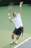 Soderling: Tennis Player Serve Royalty Free Stock Photo