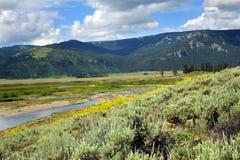 Sodowana Butte zatoczka Obrazy Royalty Free