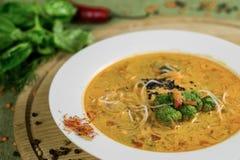 Soep met broccoli, rijstnoedels en groenten Royalty-vrije Stock Afbeeldingen