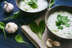 Soep met spinazie en knoflook Royalty-vrije Stock Afbeeldingen