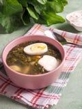 Soep met zuring en ei Lichte de zomer groene soep stock foto