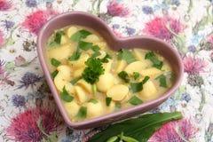 Soep van aardappels royalty-vrije stock afbeelding