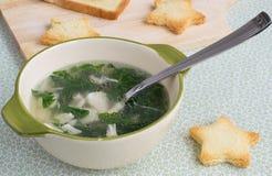 Soep van kip en spinazie Royalty-vrije Stock Afbeeldingen