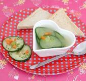Soep van komkommer stock afbeelding