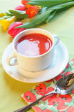 Soep van tomaat royalty-vrije stock fotografie