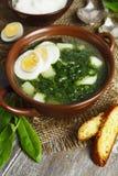 Soep van zuring en netels met eieren Stock Foto's