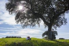 Soeur embrassant son petit frère sous l'arbre de gland Images stock
