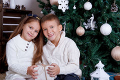 Soeur et frère sittting sous l'arbre de Noël Photographie stock