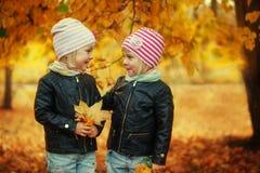 Soeurs adorables du portrait deux les petites en automne se garent avec des feuilles Photo stock