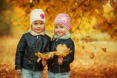 Soeurs adorables du portrait deux les petites en automne se garent avec des feuilles Images libres de droits
