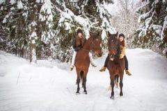 Soeurs et cheval jumeaux dans la forêt d'hiver Images libres de droits