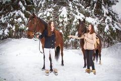 Soeurs et cheval jumeaux dans la forêt d'hiver Photos stock