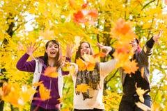 Soeurs et feuilles d'érable Photographie stock