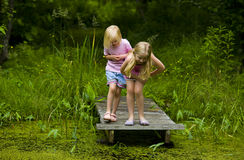 Soeurs explorant l'étang Photographie stock