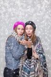 Soeurs jumelles habillées dans des vêtements chauds d'hiver Image stock