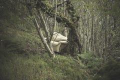 Sofà nel legno Fotografia Stock