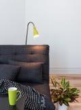 Sofá cinzento acolhedor na sala de visitas Fotografia de Stock Royalty Free