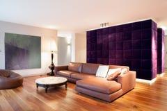 Sofá de couro Fotografia de Stock