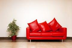 Sofá de cuero rojo con la almohadilla con la planta cerca Foto de archivo libre de regalías