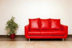 Sofá de cuero rojo con la almohadilla y la planta Imágenes de archivo libres de regalías