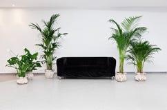 Sofá negro en interior moderno del minimalism foto de archivo